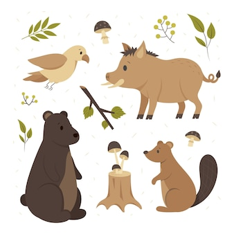 Pack d'animaux de la forêt d'automne dessinés à la main