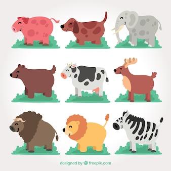 Pack d'animaux souriants de côté