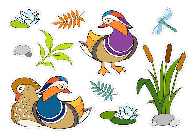 Pack d'autocollants colorés avec un canards mandarins, nénuphar, roseau, libellule isolé sur fond blanc