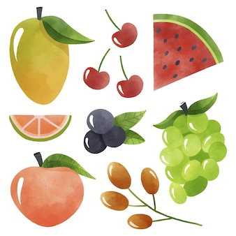 Pack de collecte de fruits