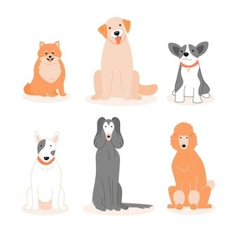 Pack de différents animaux adorables