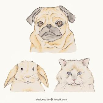 Pack fabuleux des animaux dessinés à la main