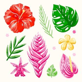Pack de feuilles et de fleurs tropicales