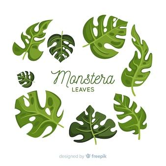 Pack de feuilles de monstera dessinées à la main