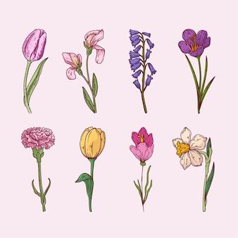Pack de fleurs dessinées à la main
