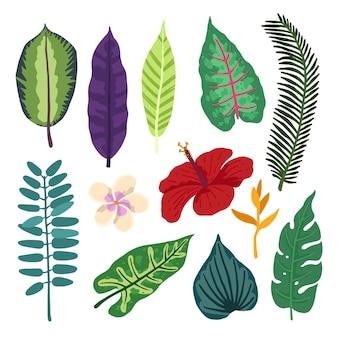 Pack de fleurs et de feuilles tropicales