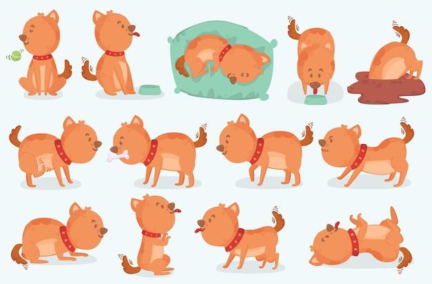 Pack d'illustrations des activités de chien