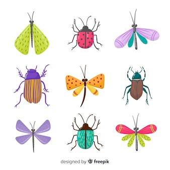 Pack d'insectes colorés dessinés à la main