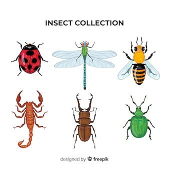 Pack d'insectes colorés dessinés à la main