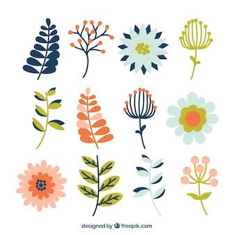 Pack plat de différents types de plantes et de fleurs