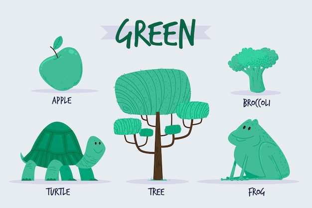 Pack de vocabulaire et de couleur verte en anglais