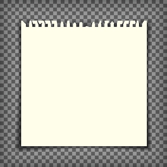 Page de cahier vide avec bord déchiré