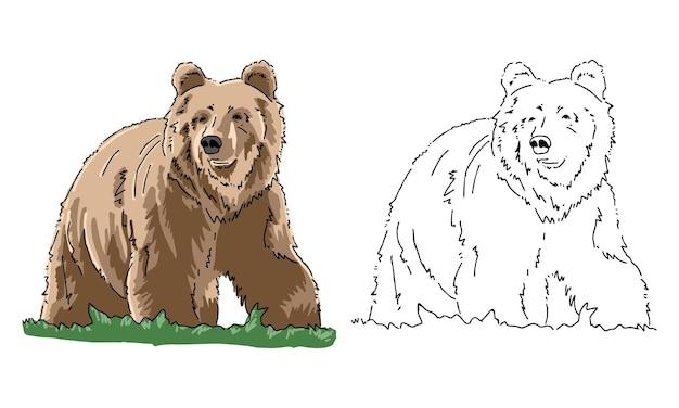 Page de coloriage ours dessiné à la main pour enfant
