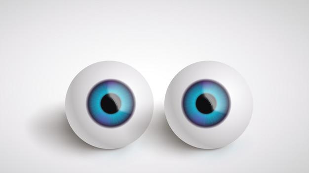 Paire de globes oculaires