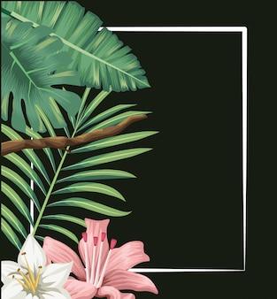 Palmier hibiscus fleurs exotiques tropicales