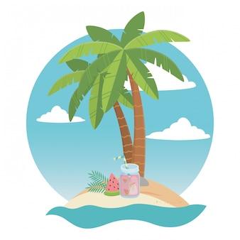Palmiers et boisson sur l'île