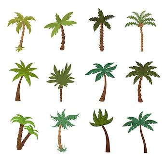 Palmiers de californie. jeu de vecteur de plantes tropicales d'été