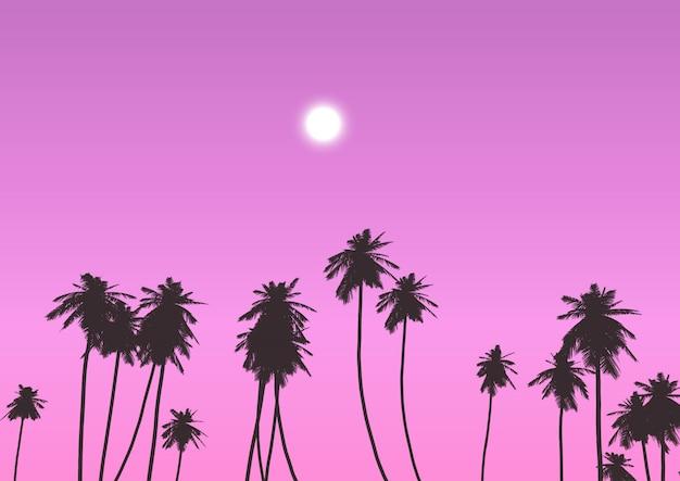 Palmiers contre ciel coucher de soleil
