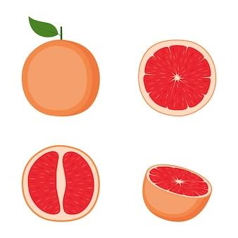 Pamplemousse, fruit entier, moitié, tranche, illustration vectorielle