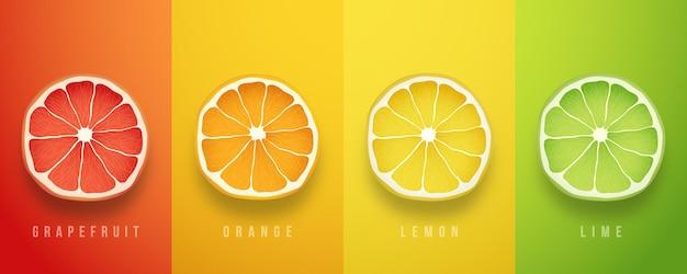 Pamplemousse Orange Citron Et Citron Vert Fruits Frais Vecteur Premium
