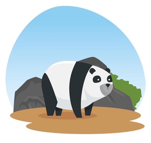 Panda animal sauvage avec des pierres et des arbustes