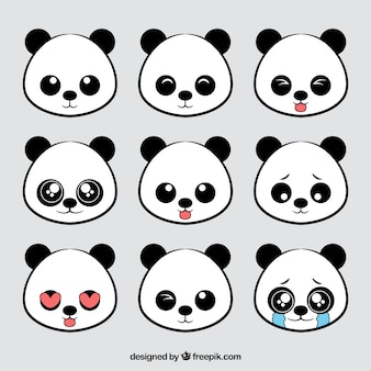 Panda collection ours avatar