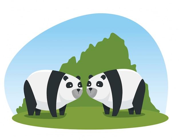 Panda couple animaux sauvages avec des arbustes