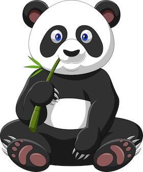 Panda de dessin animé, manger du bambou