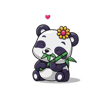 Panda mignon mange du bambou isolé sur blanc