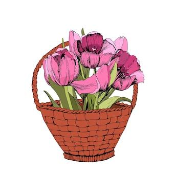 Panier avec des tulipes roses colorées. illustration vectorielle. humeur printanière.