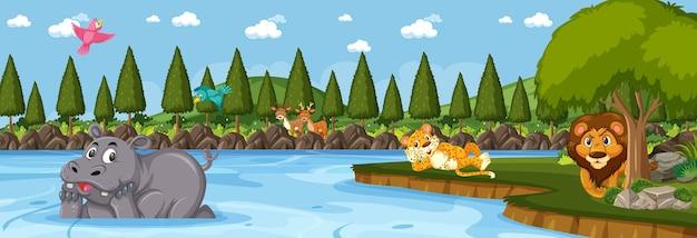 Panorama forestier sur scène de jour avec divers animaux sauvages