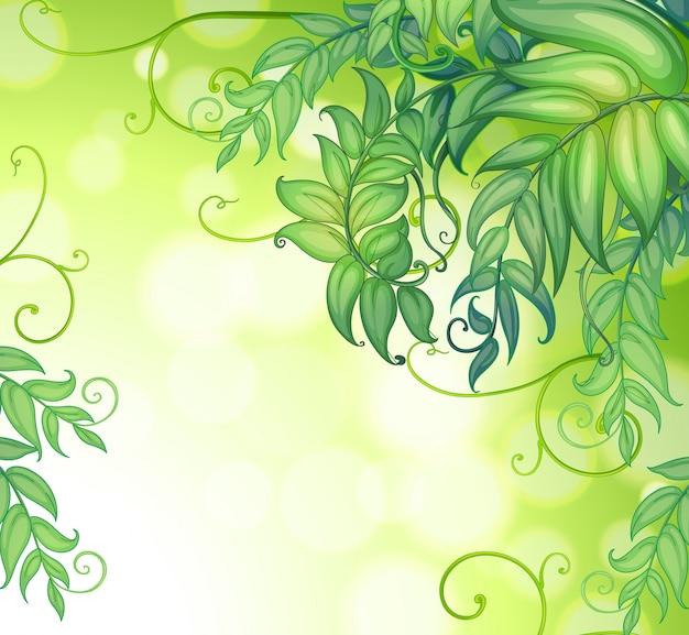 Une papeterie avec des couleurs dégradées et des feuilles vertes