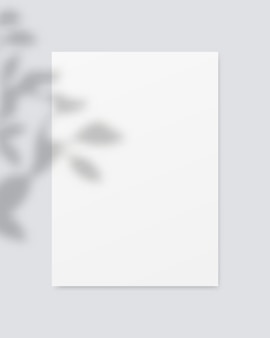 Papier blanc vierge avec superposition d'ombres. . conception de modèle. illustration vectorielle réaliste.