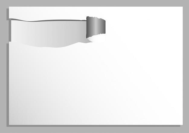 Papier déchiré abstrait fond de vecteur de ton blanc et gris