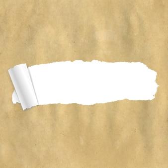 Papier d'emballage déchiré avec un filet de dégradé,