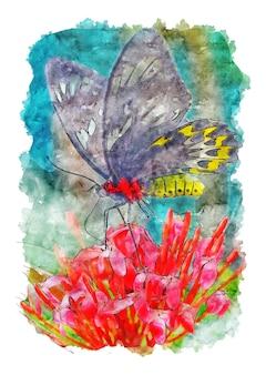 Papillon accroché sur une fleur rouge pollen papillon aquarelle