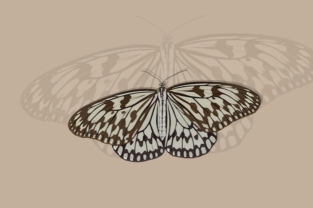 Papillon blanc combiné avec dessin à la main noire