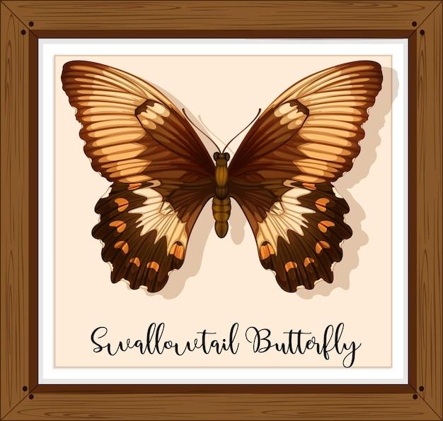 Papillon sur cadre en bois