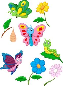 Papillon, chenille et cocon
