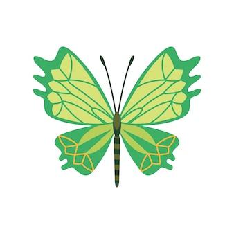 Papillon de couleur exotique. ailes ou insecte de papillon dessinés à la main. animal tropical de dessin animé. icône vecteur isolé