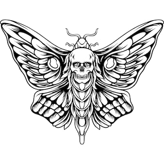 Papillon, à, crâne, tête, silhouette