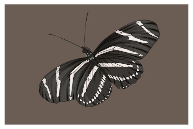Papillon est dessin à la main en noir et blanc