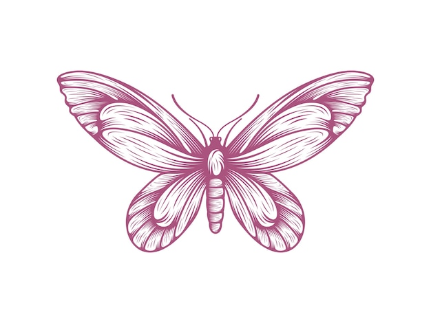 Papillon icône symbole illustration vectorielle