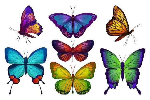 Papillon ou papillon papillon mis icônes vectorielles