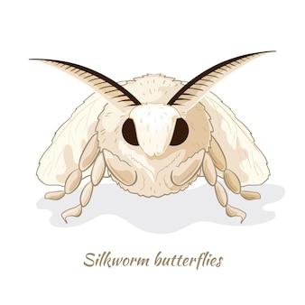 Papillon de ver à soie. portrait en gros plan.