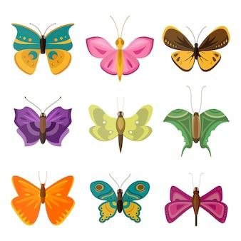 Papillons colorés.