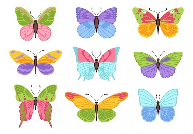 Papillons de couleurs aquarelle isolés. joli papillon vecteur
