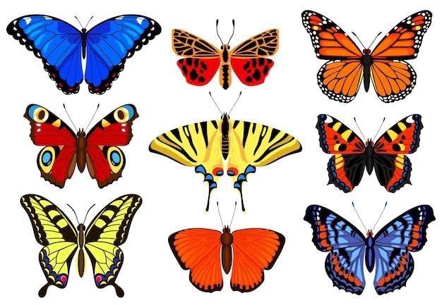 Papillons de dessin animé