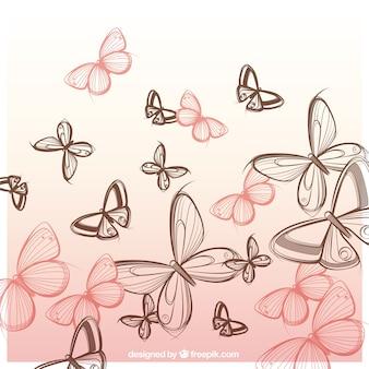 Papillons dessinés à la main fond
