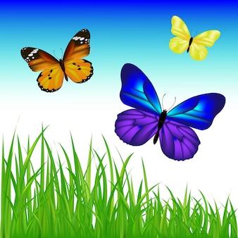 Papillons et herbe verte avec filet de dégradé, illustration